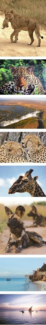 Kruger Victoria Falls & Zanzibar Overland Safari