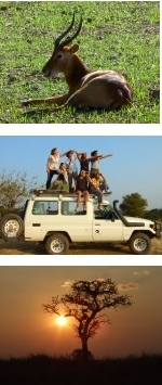 Zambia Kafue and Luangwa experience