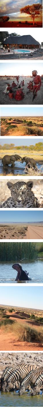 Kalahari Experience in Namibia