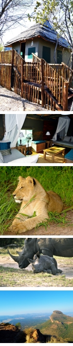 Honey Guide -  BIG 5 Malaria Free, Luxury Tent Safari