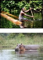 Gabon Explorer