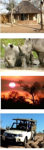 Special 15-Day North to South Adventure Kruger Safari